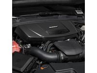 Cadillac 3.6L Engine Cover in Carbon Fiber - 12672525
